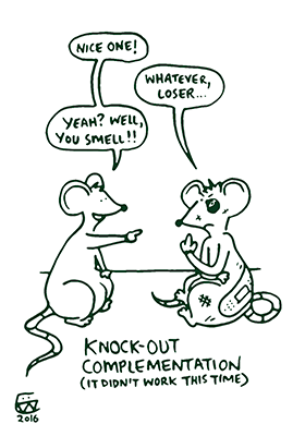 Knock out compliments